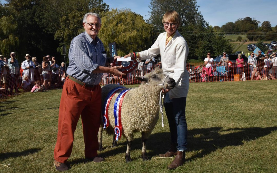 Sheep Judging Show Results